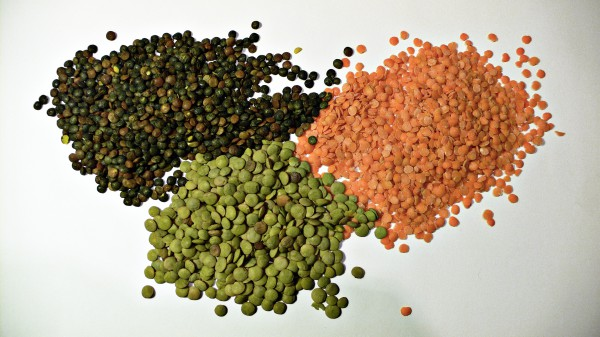 Lentil cheap and healthy food
