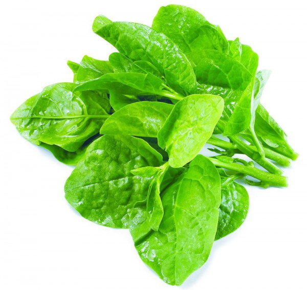 Spinach_3-600x565