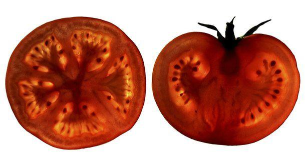 'Tomato pill'