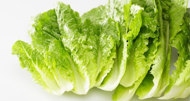 10 Amazing Health Benefits of Lettuce