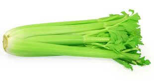 Celery cure for leukemi3