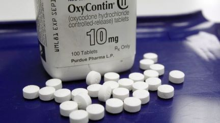 OxyContin and other opioids tied to 1 in 8 deaths in young adults