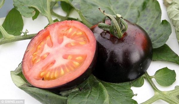 A New Vegetable That Kills Cancer Cells 2