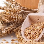 Greater whole grains intake linked with lower mortality